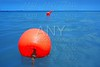 red buoy row floating blue sea with rope closeup