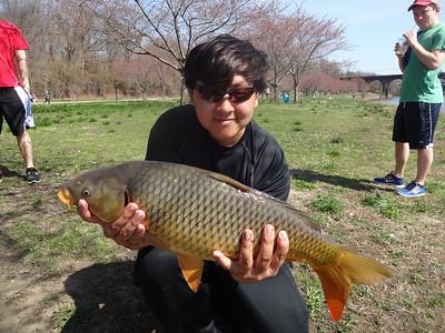 April 12th, 2014 - Common Carp - Schuylkill River
