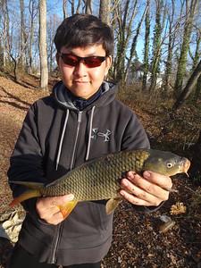 January 20th, 2013 - Common Carp - Audubon Lake