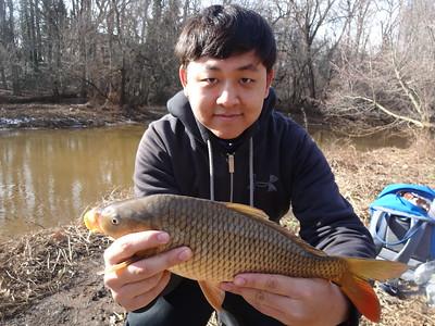 February 2nd, 2013 - Common Carp - Upper Cooper River