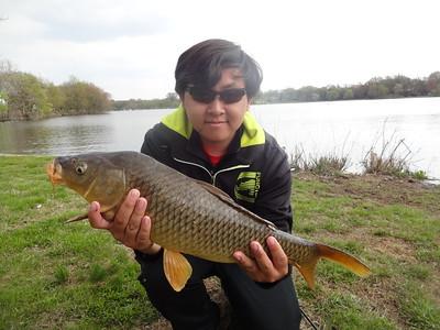 April 26th, 2014 - Common Carp - Cooper River Lake