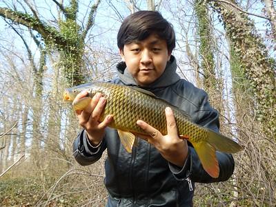 February 11th, 2012 - Common Carp - Audubon Lake