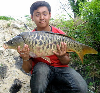 July 13th, 2011 - Fully Scaled Mirror Carp - Darby Creek