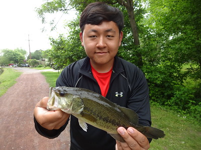 May 21st, 2014 - Largemouth Bass - Delaware Canal