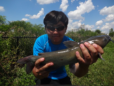July 17th, 2014 - Channel Catfish - Delaware River
