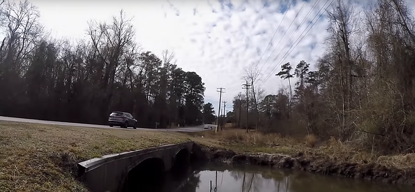 February 17th, 2016 - Nameless ditch in Jacksonville, NC (GALLERY THUMBNAIL)