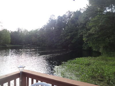 April 21st, 2017 - Scenery - Myrtle Beach Unnamed Pond (GALLERY THUMBNAIL)