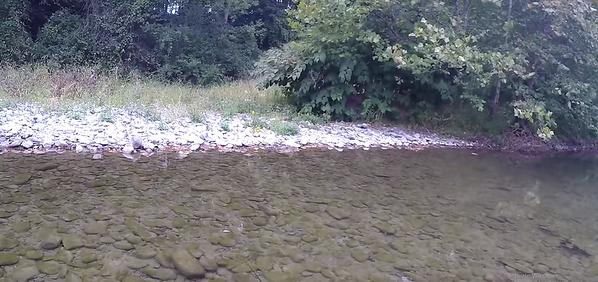 September 17th, 2016 - Scenery - Owego Creek (GALLERY THUMBNAIL)