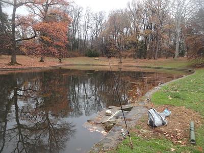 December 5th, 2016 - Scenery - Pastorius Park Pond (GALLERY THUMBNAIL)