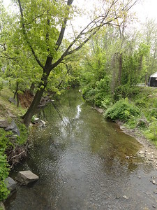 May 6th, 2013 - Scenery - Byberry Creek (GALLERY THUMBNAIL)