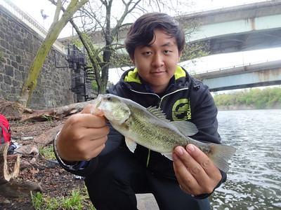 April 29th, 2013 - Largemouth Bass - Schuylkill River