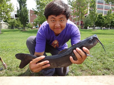 August 4th, 2012 - Channel Catfish - Schuylkill River