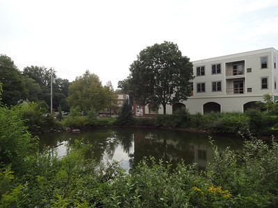 August 31st, 2015 - Scenery - Village Ponds in Newtown (GALLERY THUMBNAIL)