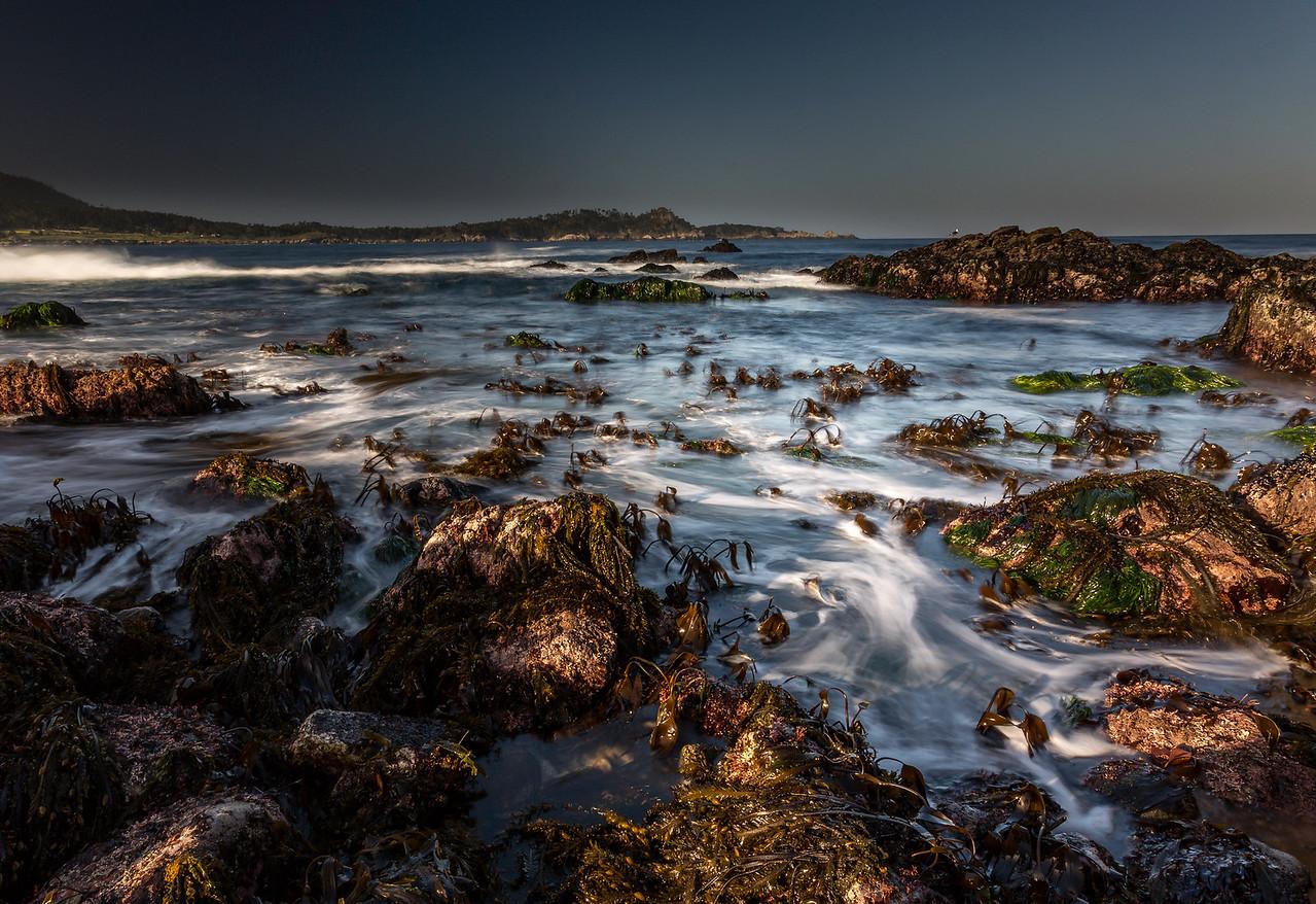 Low Tide Melt
