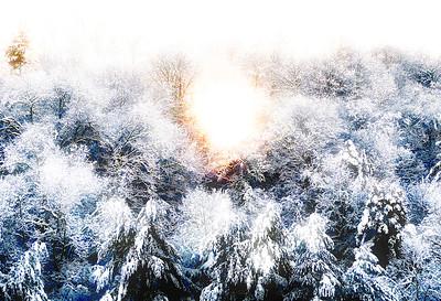 Sunrise After Snow