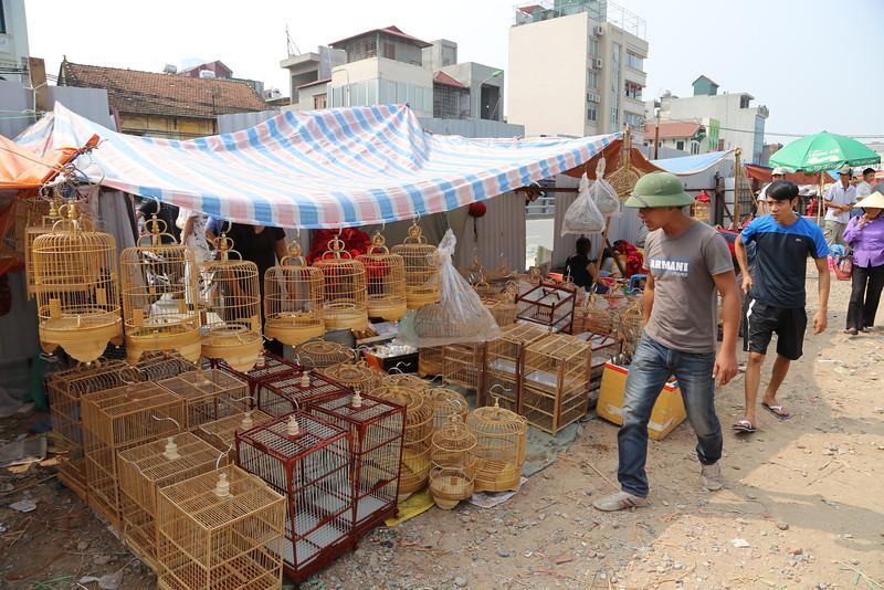HaNoi bird market, street scenes Nov 2013