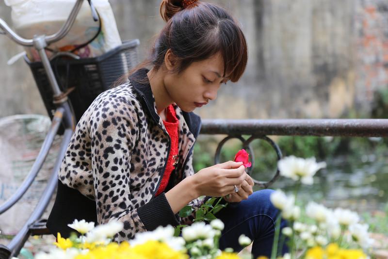 HaNoi flower girl, near the B52 remains Nov 2013