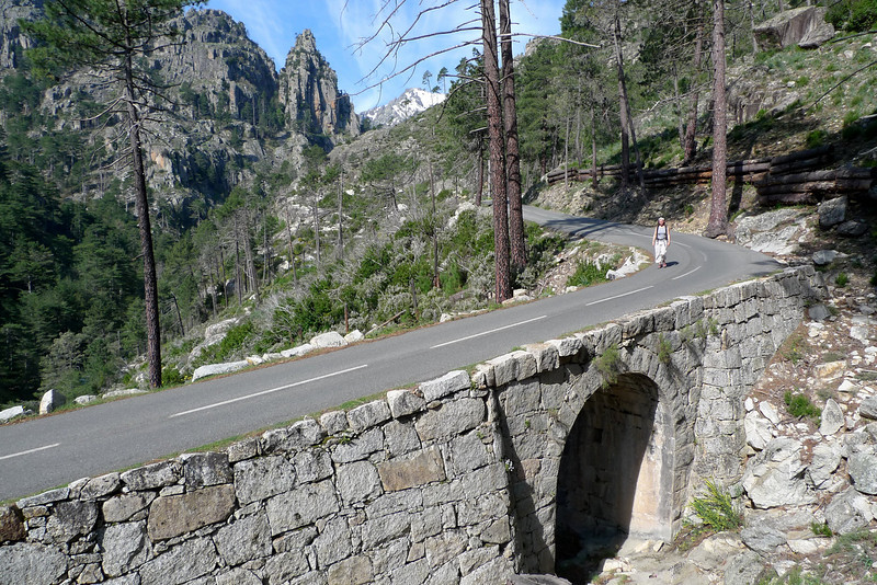 Le route de la Restonica, où il est assez délicat de doubler...