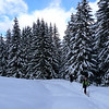 Depuis l'Erigné au dessus de Morzine, suivre un temps la piste de ski de fond...