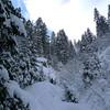 Finish dans la forêt skiable, pour le plus grand plaisir de Juliette !