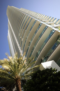 Modern abstract architecutre with a palm tree