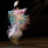 Seminole Rainbow Dancer