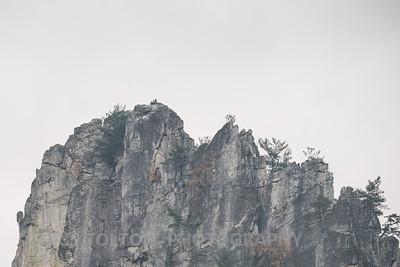 20141012©-_DS11781
