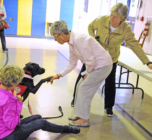SENIOR CITIZEN GROUP . DOG DAY THERAPY- 03/27/19