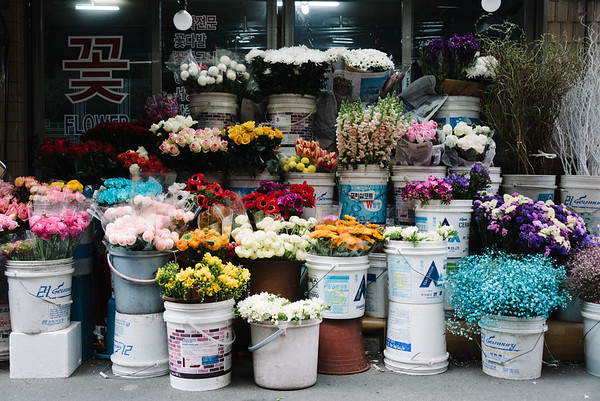 Flower Shops and Cafes