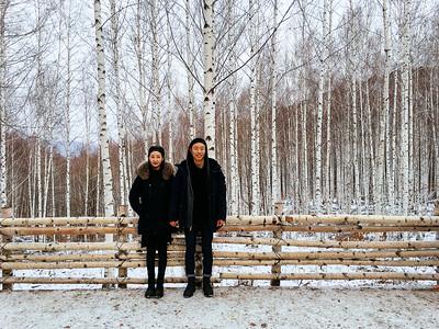 Travel 2/16: Inje Birch Forest