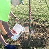 SUBMITTED PHOTO | MEGAN WATERS<br /> National Planting Day took place over the weekend. Volunteers with Pride In McAlester planted 7 Lace Bark Elm trees at Central Bark Dog Park. Pictured is Robbie Patton watering one of the newly planted trees.
