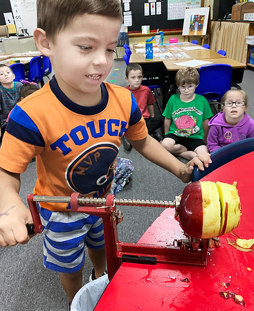 SUBMITTED PHOTO |    <br /> Gunner Ferrari, takes his turn peeling an apple for a class project. The Emerson First Grade class fixed homemade apple sauce recently in honor of Johnny Appleseed's birthday.