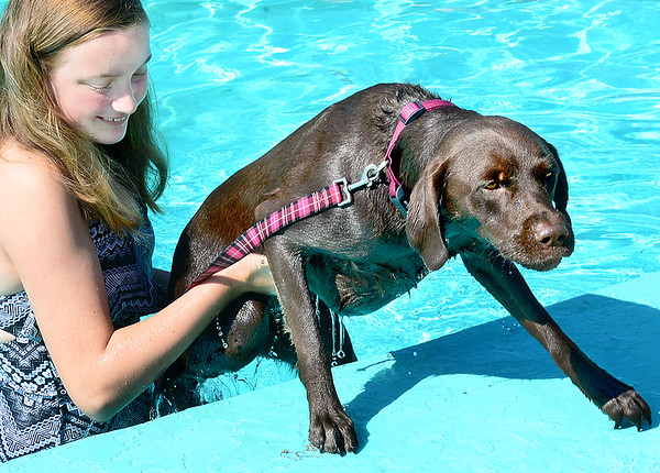 KEVIN HARVISON |<br /> Hannah Harrison, left, helps Scout get out of the water during the Pooch Plunge Saturday at Jeff Lee Pool.