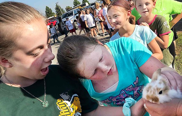 KEVIN HARVISON | Staff photo<br /> A line of fair goer's stop to pet a bunny before entering the Pittsburg Conty Free Fair Friday.