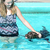 KEVIN HARVISON |<br /> Hannah Harrison, left, gets in a couple laps with Scout during the Pooch Plunge Saturday at Jeff Lee Pool.