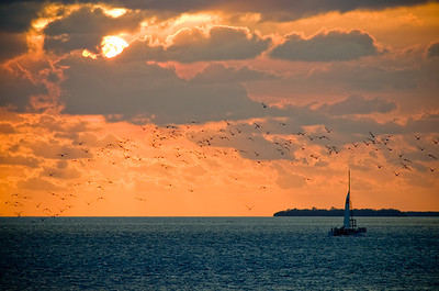 Sunset Sail, Key West, Florida