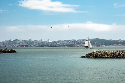 View of SF from Fort Baker Marina