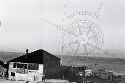Golden Gate Shrimp Co.