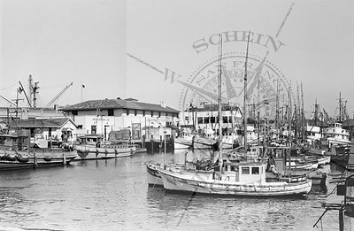 The Real Fishermans Wharf- Seaman Chapel and Commercial Fisheries