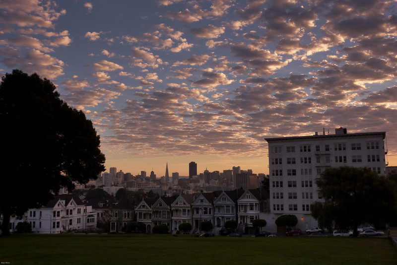 From Alamo Square