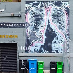 Medweb Mural