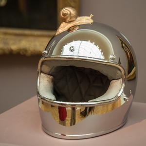 Snail on the Helmet