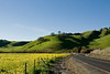 Alhambra Valley Rd., near Briones Park (2008)