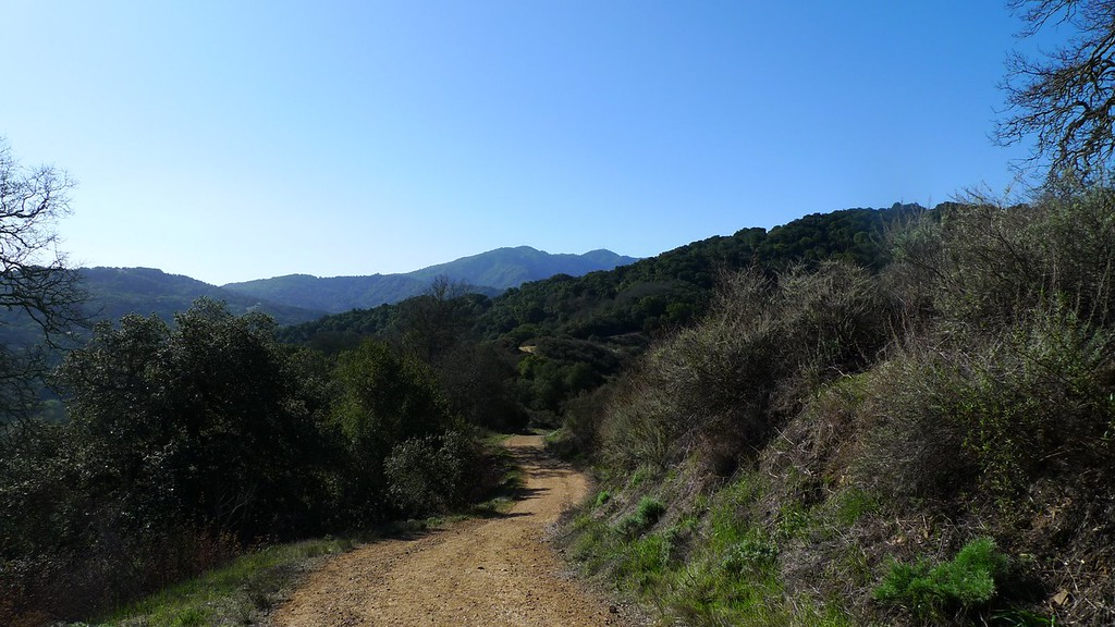Loma Prieta Peak in the distance - high point of the Santa Cruz mountains. I still need to climb that one. It's not within park land so it's difficult access due to overzealous land owners (even when on land they don't own).