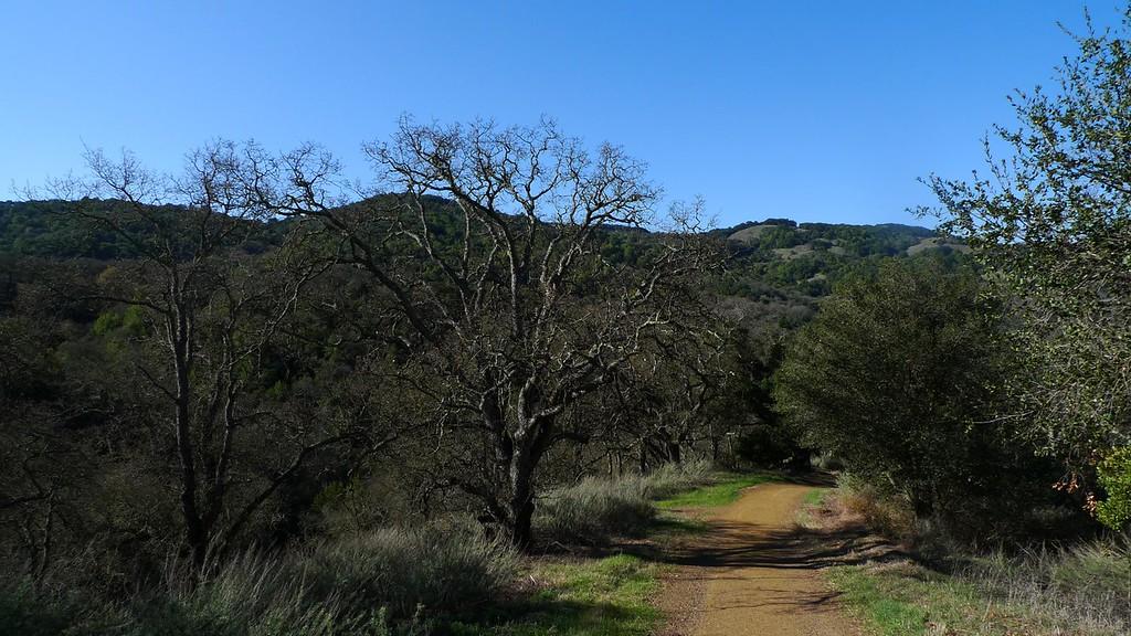 Church and Mine Hills from the Hacienda Trail