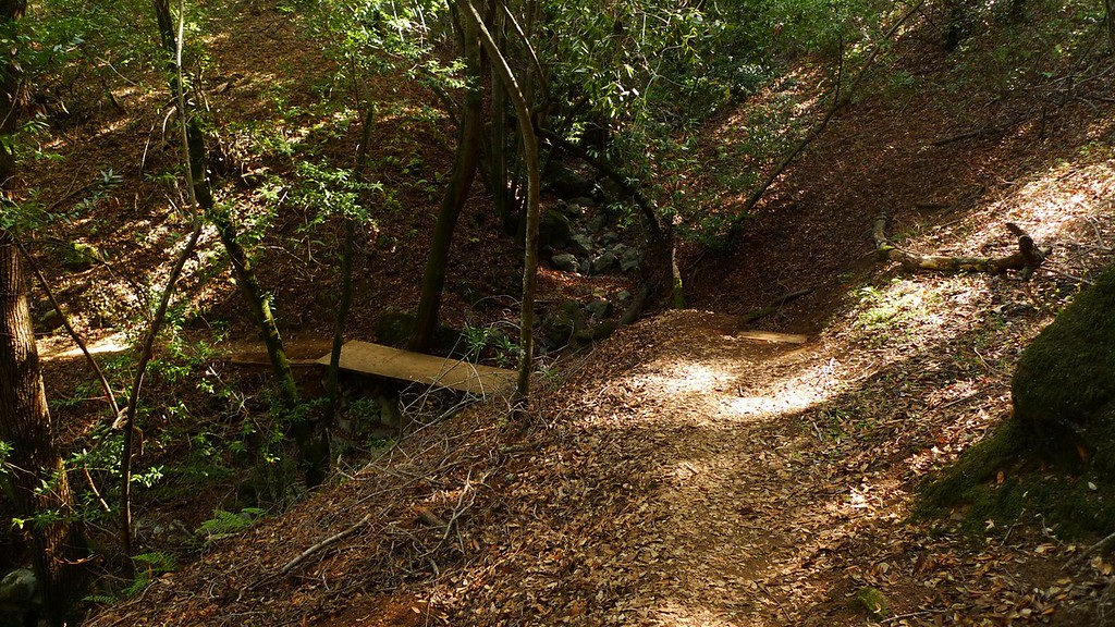 New Almaden Trail