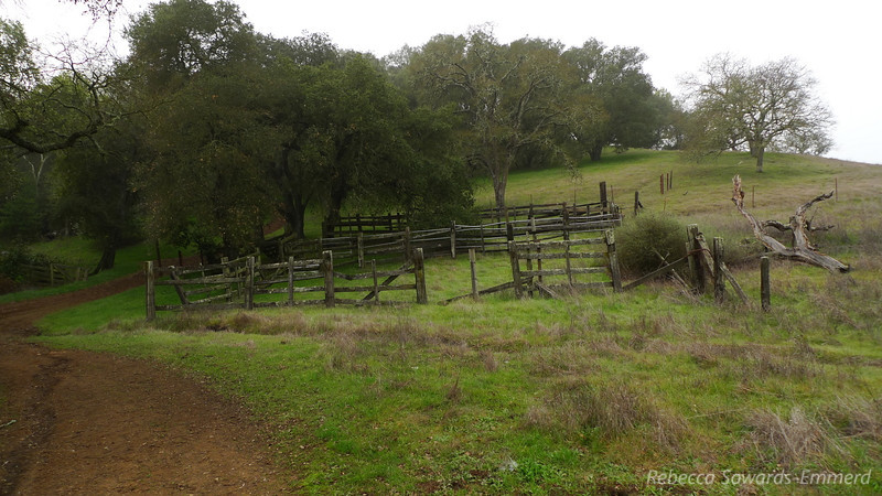 An old corral at a trail junction.