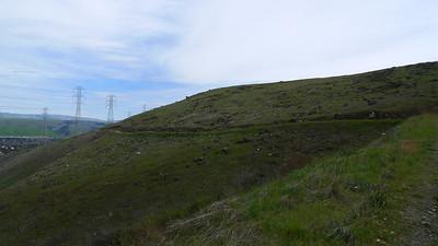 Green hills of Santa Teresa