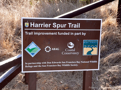 We start off down the Harrier Spur Trail