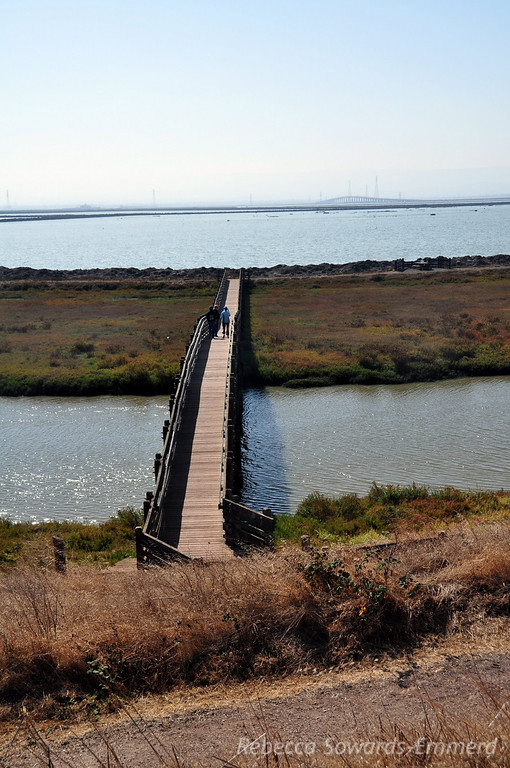 Bridge across Slough
